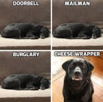 Cheese wrapper.png