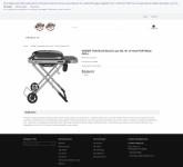 screencapture-webcache-googleusercontent-search-2020-11-17-22_08_47.png